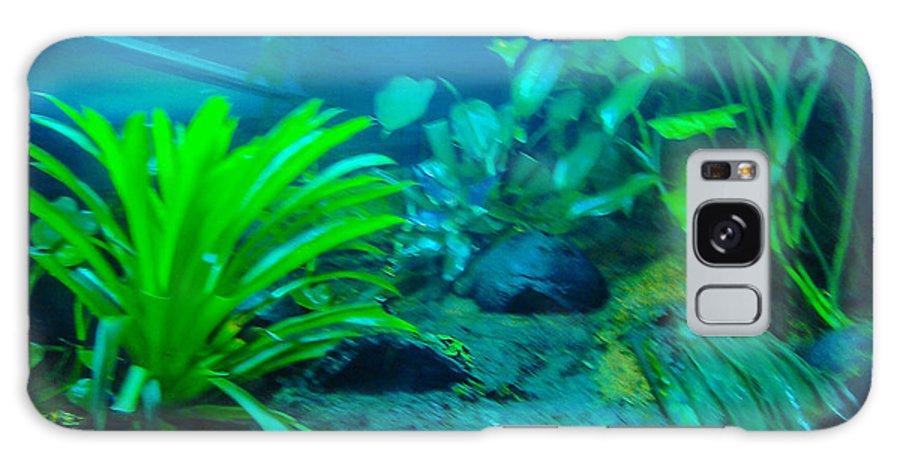 Aquariums Galaxy S8 Case featuring the photograph Aquariums by Tinjoe Mbugus