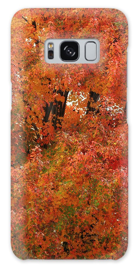 Photo Frames Galaxy S8 Case featuring the photograph Autumn Colors by CE Haynes