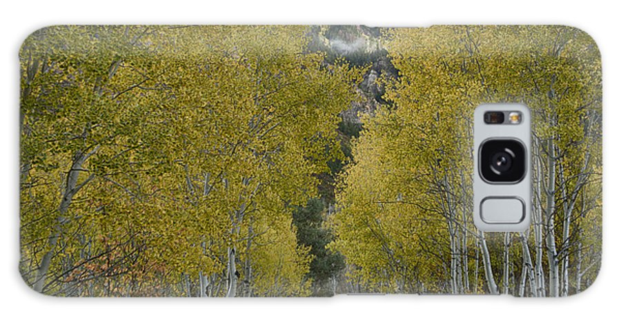 Central Colorado Galaxy S8 Case featuring the photograph Autumn Drive by Idaho Scenic Images Linda Lantzy