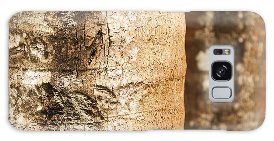 Textured Galaxy S8 Case featuring the photograph Bark Of A Tree by Rudra Narayan Mitra
