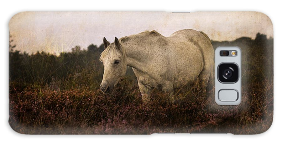 Pony Galaxy S8 Case featuring the photograph Bed Of Heather by Angel Ciesniarska