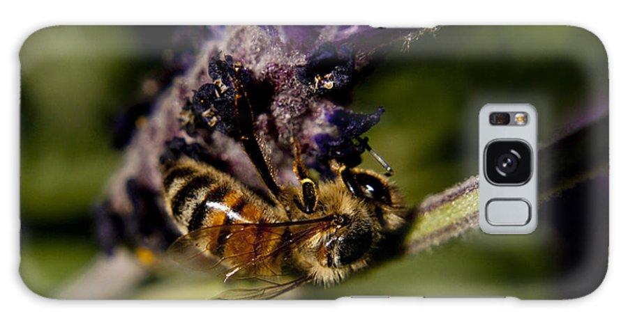 Bee Galaxy S8 Case featuring the photograph BEE by Terence Kneale