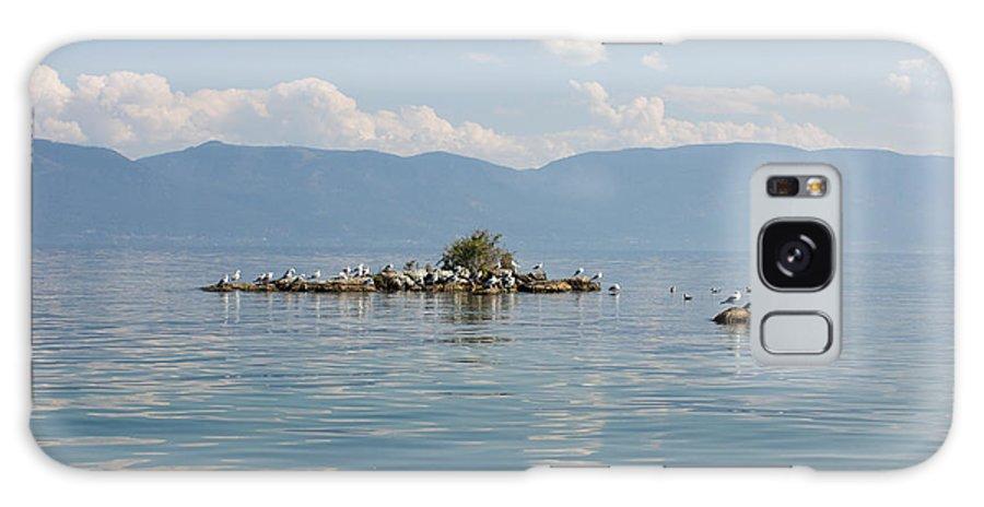 Bird Island Galaxy S8 Case featuring the photograph Bird Island by June Hatleberg Photography