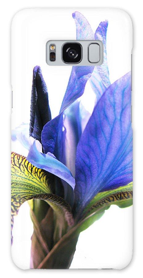 Blue Iris Galaxy S8 Case featuring the photograph Blue Iris 1 by Gill Piper