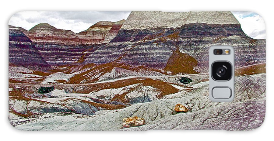 Blue Mesa Trail In Petrified Forest National Park Galaxy S8 Case featuring the photograph Blue Mesa Trail In Petrified Forest National Park-arizona by Ruth Hager