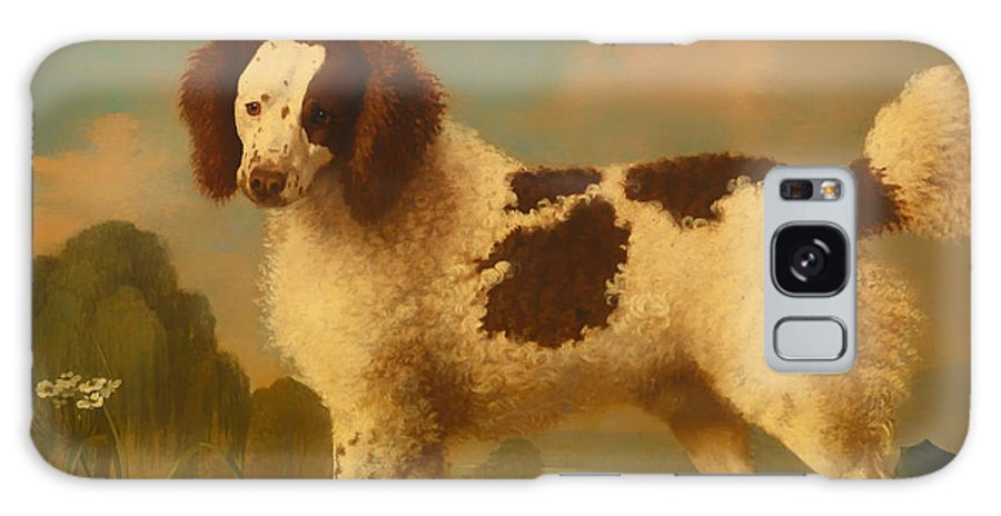 Painting Galaxy S8 Case featuring the painting Brown And White Norfolk Or Water Spaniel by Mountain Dreams