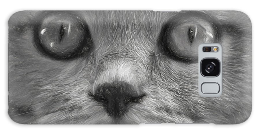 Cat's Eyes Galaxy S8 Case featuring the photograph Cat's Eyes by Sheila Smart Fine Art Photography