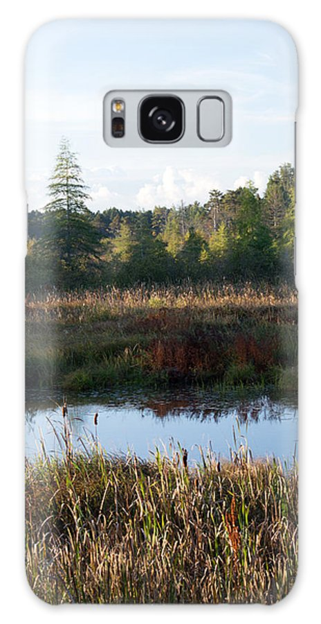 Wetland Galaxy S8 Case featuring the photograph Chill In The Air by Linda Kerkau