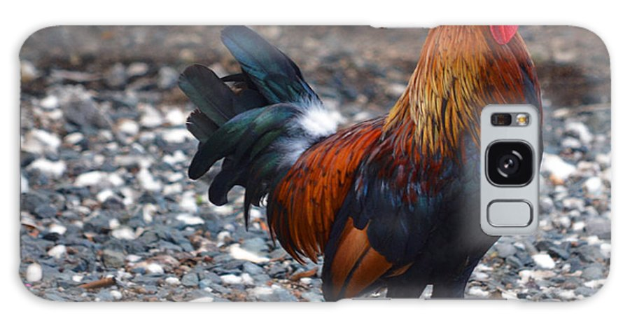 Rooster Galaxy S8 Case featuring the photograph Cock On The Walk by Sherry Dooley