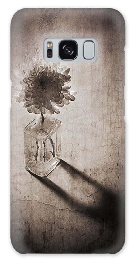 Still Life Galaxy S8 Case featuring the photograph Cremon by Jim Larimer