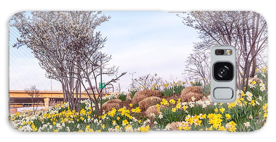 America Galaxy S8 Case featuring the photograph Daffodil Hill by Susan Cole Kelly
