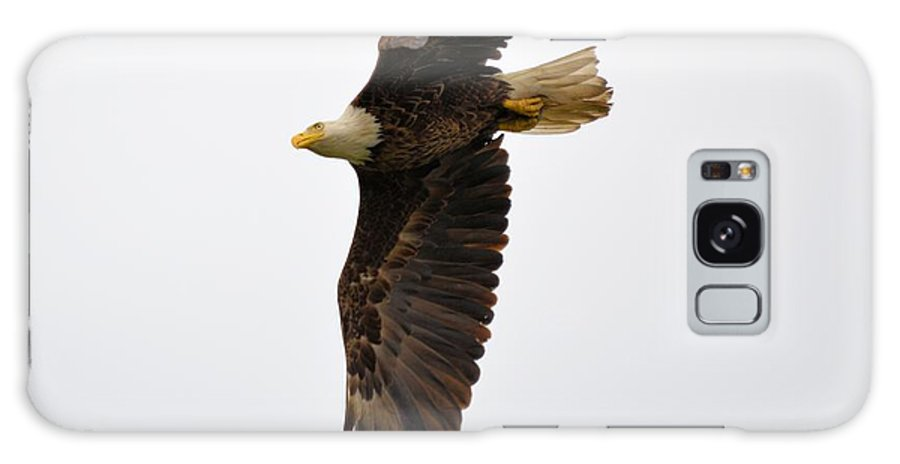 Eagle Galaxy S8 Case featuring the photograph Eagle Flight by Bonfire Photography