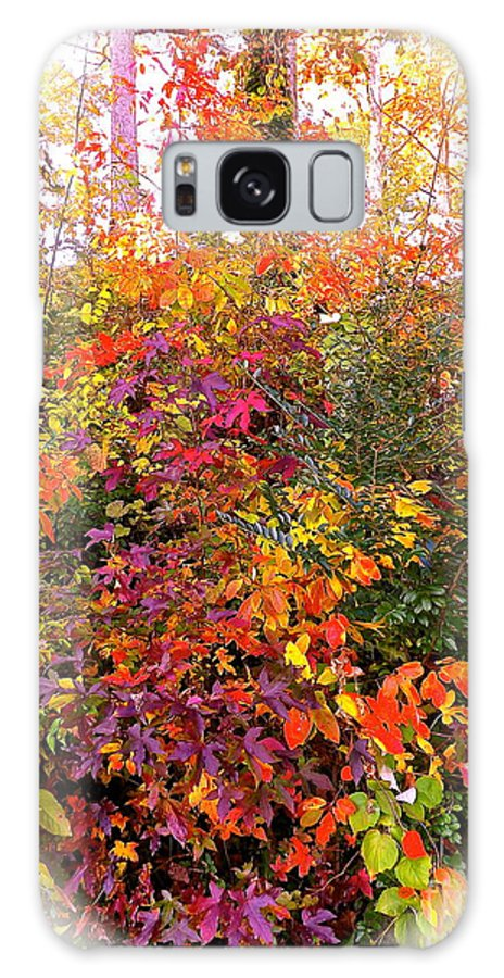 Fall Galaxy S8 Case featuring the photograph Fall Colors by John Potts