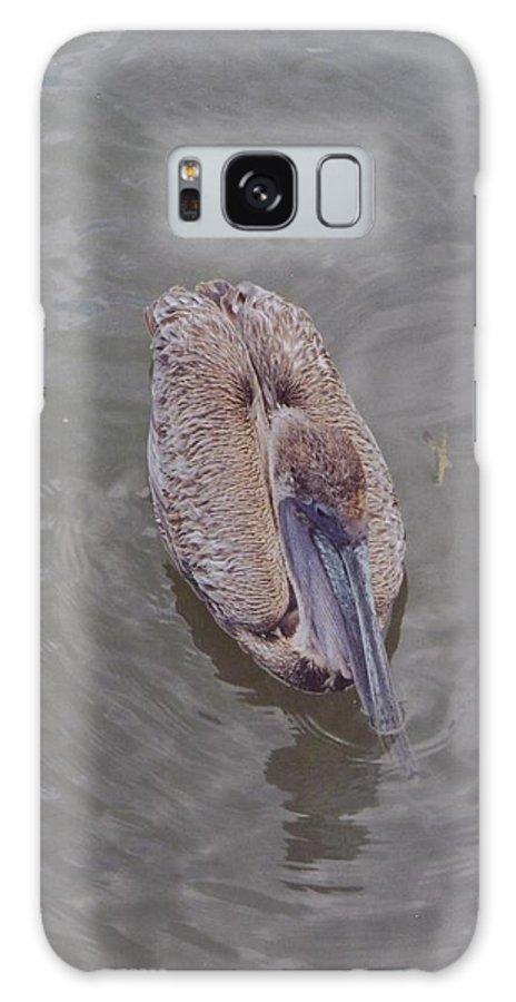 Matlasha Galaxy S8 Case featuring the photograph Female Pelican by Robert Floyd