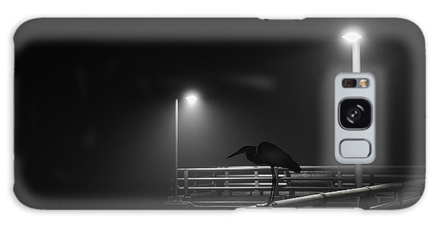Bird Galaxy S8 Case featuring the photograph Foggy Morning by Russ Burch