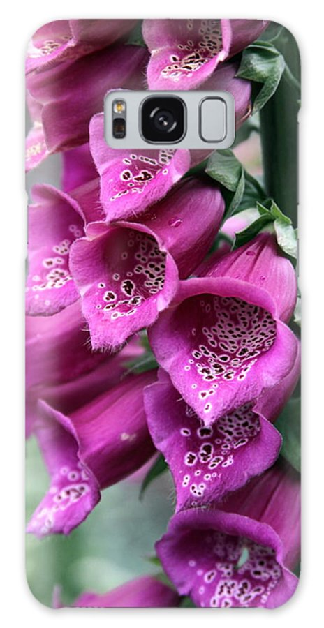 Foxglove Galaxy S8 Case featuring the photograph Foxglove Digitalis Spcial by Kevin F Cook