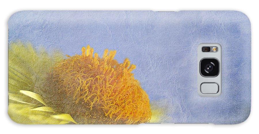 Golden Everlasting Daisy Galaxy S8 Case featuring the photograph Golden Everlasting Daisy by Ben Bassey