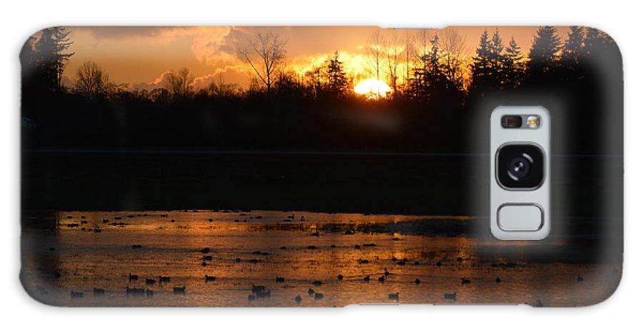 Gold Galaxy S8 Case featuring the photograph Golden Sunset by Jan Noblitt