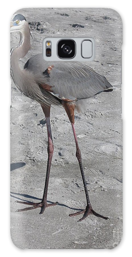 Heron Galaxy S8 Case featuring the photograph Great Blue Heron On The Beach by Christiane Schulze Art And Photography