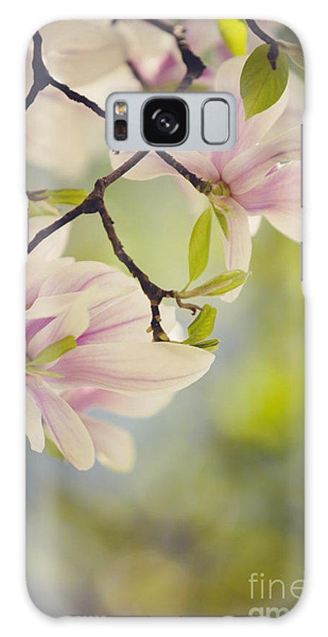 Magnolia Galaxy Case featuring the photograph Magnolia Flowers by Nailia Schwarz