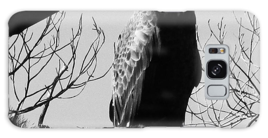 Eagle Galaxy S8 Case featuring the photograph North American Bald Eagle by Susan Carella