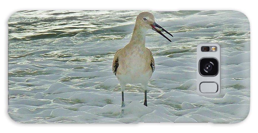 Ocean Galaxy S8 Case featuring the photograph Ocean Bird by Holly Dwyer