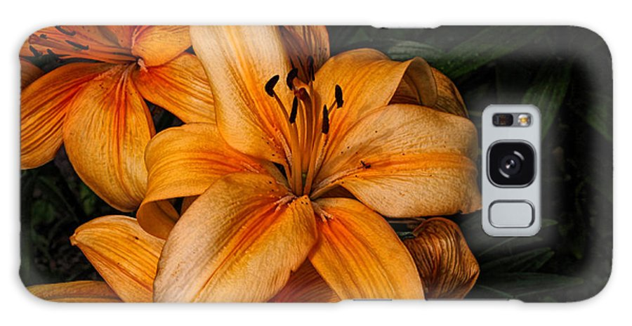 Lilies Galaxy S8 Case featuring the photograph Orange Lilies by Lena Auxier