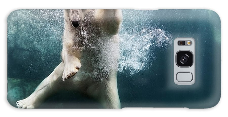 Diving Into Water Galaxy Case featuring the photograph Polarbear In Water by Henrik Sorensen