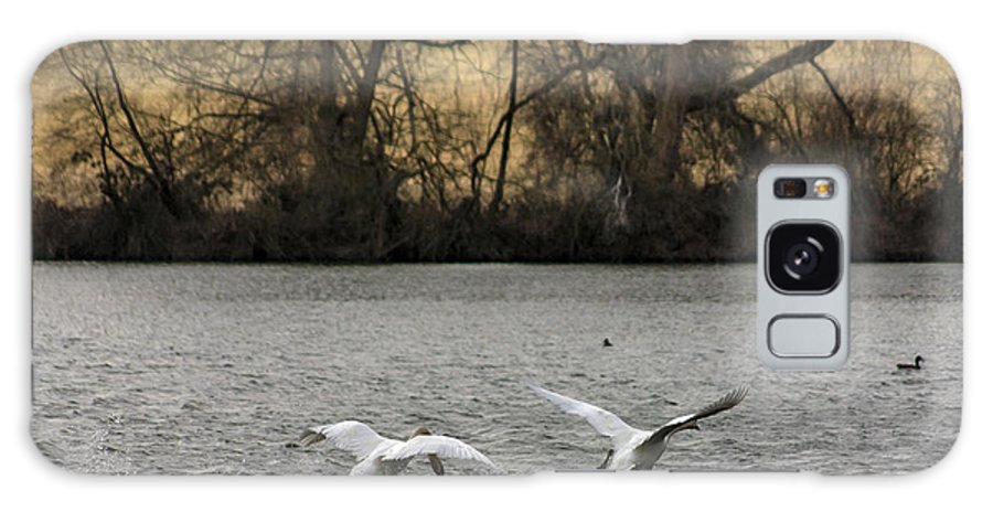 Swan Galaxy S8 Case featuring the photograph Ready For Take Off by Trevor Kersley