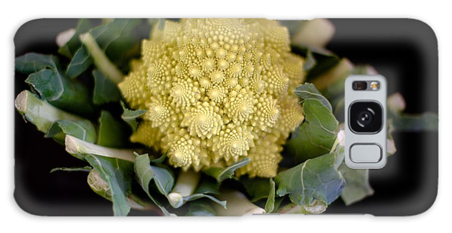 Vegetable Galaxy S8 Case featuring the photograph Romanesco - Italian Broccoli by Frank Gaertner
