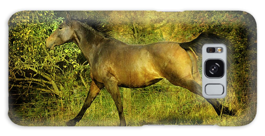 Horses Galaxy S8 Case featuring the photograph Running Free by Angel Ciesniarska
