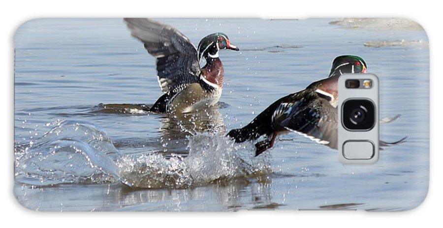 Wood Duck Galaxy S8 Case featuring the photograph Running On The Water by Lori Tordsen