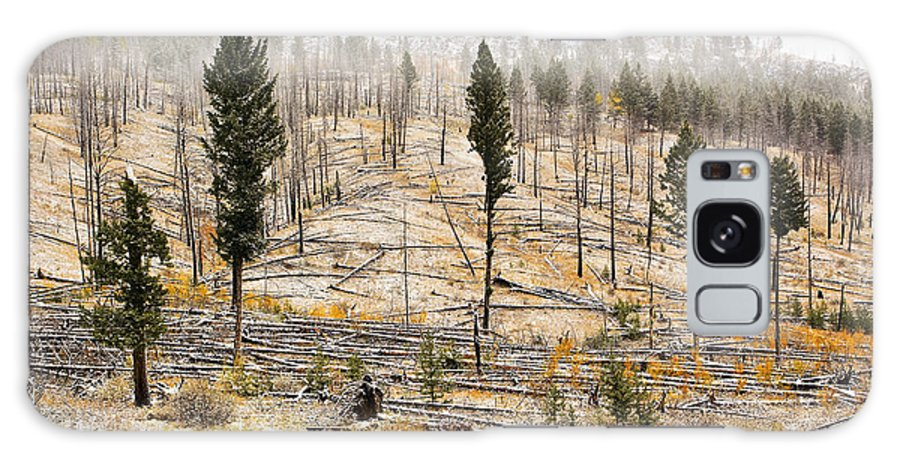 Bow Valley Parkway Galaxy S8 Case featuring the photograph Sawback Burn, On Bow Valley Parkway by Ken Gillespie