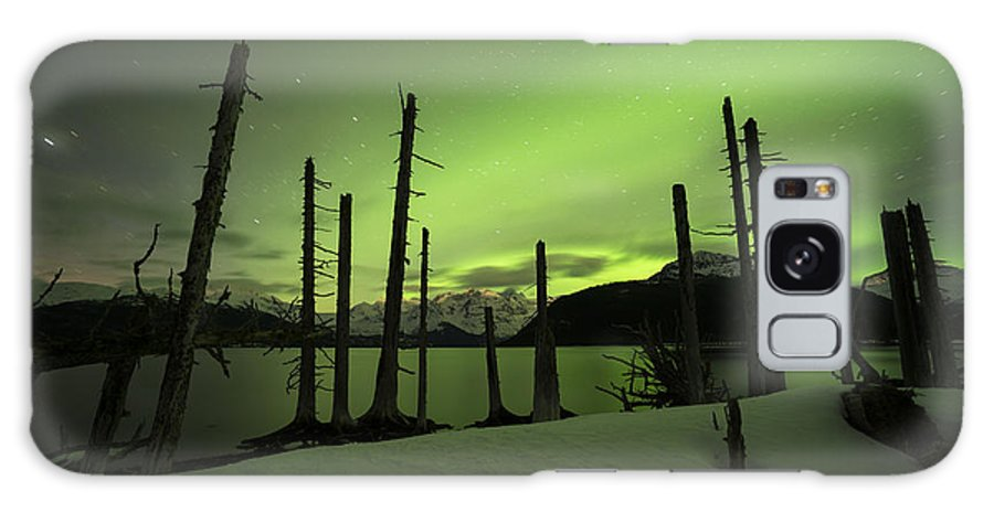 Aurora Galaxy S8 Case featuring the photograph Sentinals by Ted Raynor