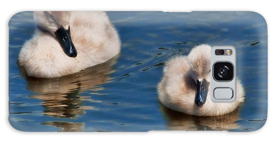 Swans Galaxy S8 Case featuring the photograph Soft And Fluffy by Susie Peek