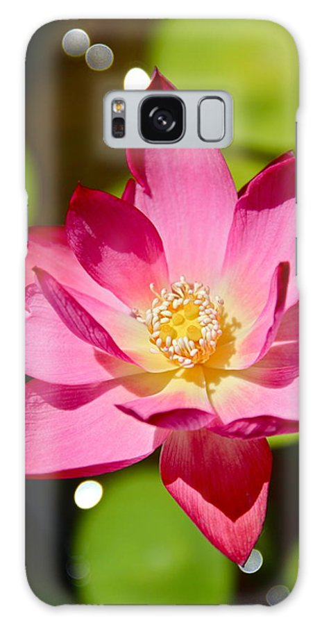 Lotus Galaxy S8 Case featuring the photograph Sparks Lotus by Deanne Rotta