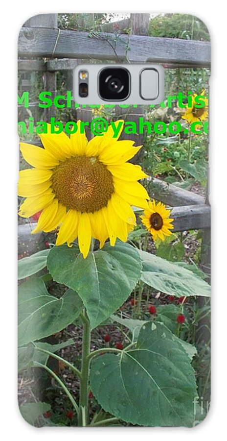 Sunflower Galaxy S8 Case featuring the photograph Sunflower by Eric Schiabor