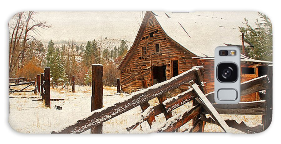 Barns Galaxy S8 Case featuring the photograph Surviving The Elements by Donna Kennedy