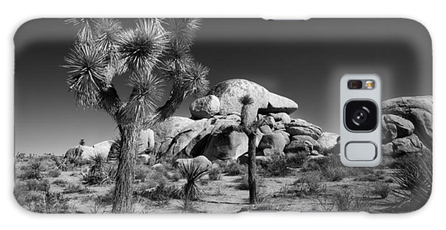 Black & White Galaxy S8 Case featuring the photograph The Joshua Tree by Peter Tellone