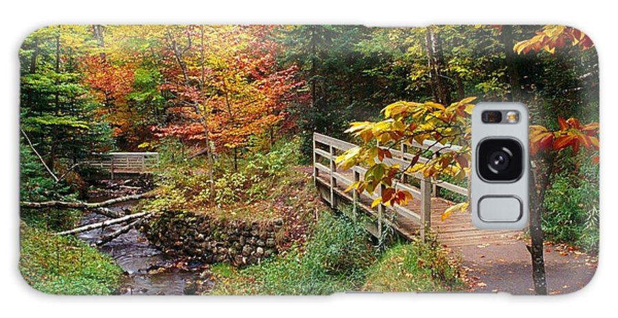 Autumn Galaxy S8 Case featuring the photograph There Is A Harmony In Autumn by Lori Strock