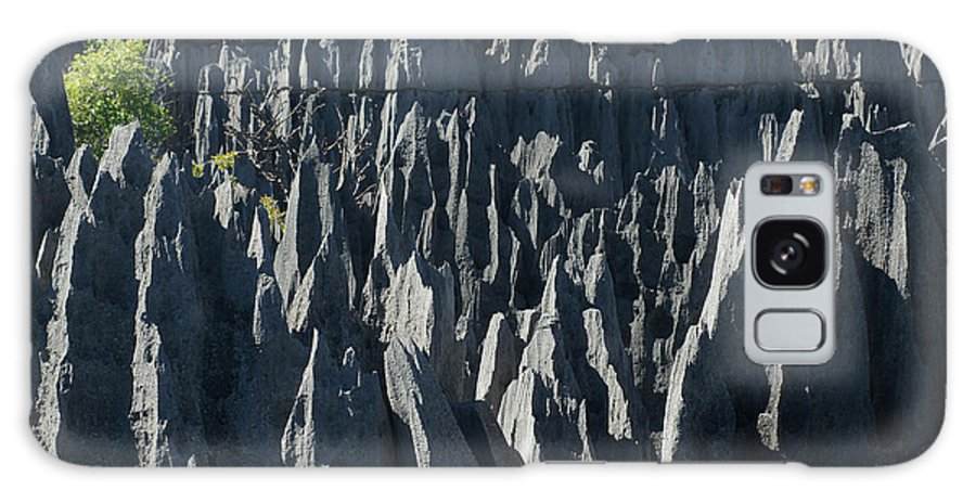 Prott Galaxy S8 Case featuring the photograph Tsingy De Bemaraha Madagascar by Rudi Prott