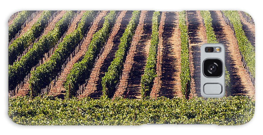 Napa Valley California Wineries Winery Grapevine Grapevines Row Rows Landscape Landscapes Plant Plants Vineyard Vineyards Galaxy S8 Case featuring the photograph Vineyard Rows by Bob Phillips