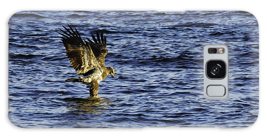 Bald Eagle Galaxy S8 Case featuring the photograph Walking On Water by Robert Smice