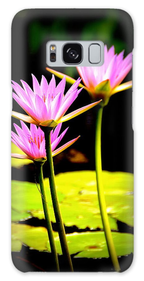 Water Lilies Galaxy S8 Case featuring the photograph Water Lilies by Dave Wangsness