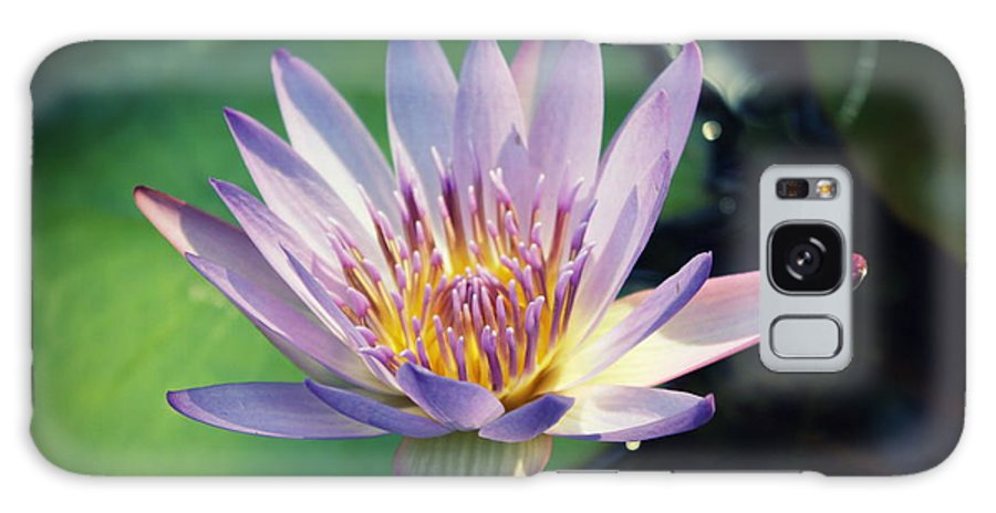Waterlily Galaxy S8 Case featuring the photograph Blue Water Lily by Irina Davis