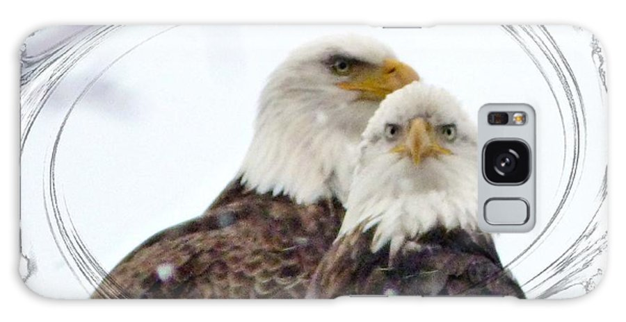 Bald Eagle Galaxy Case featuring the photograph We Two by Rennae Christman