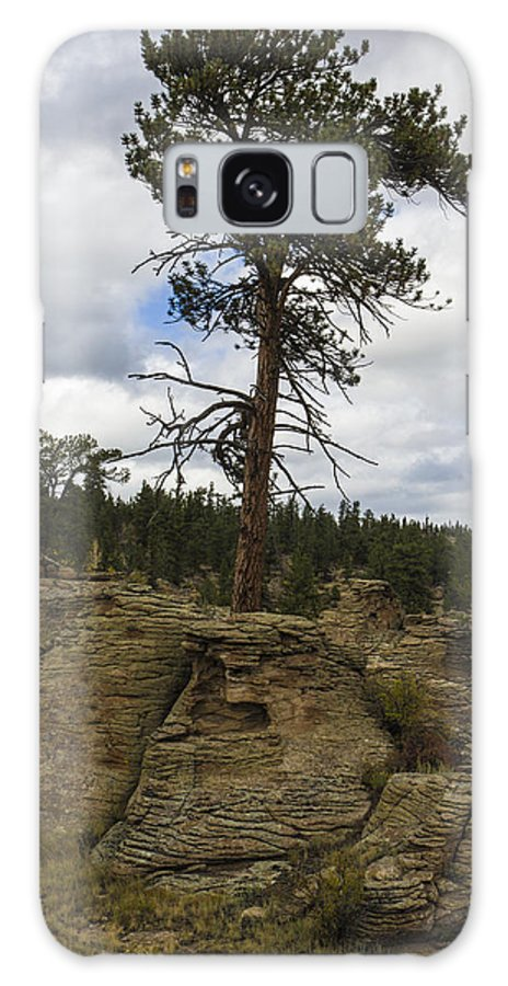 Colorado Photographs Galaxy S8 Case featuring the photograph Alone by Gary Benson