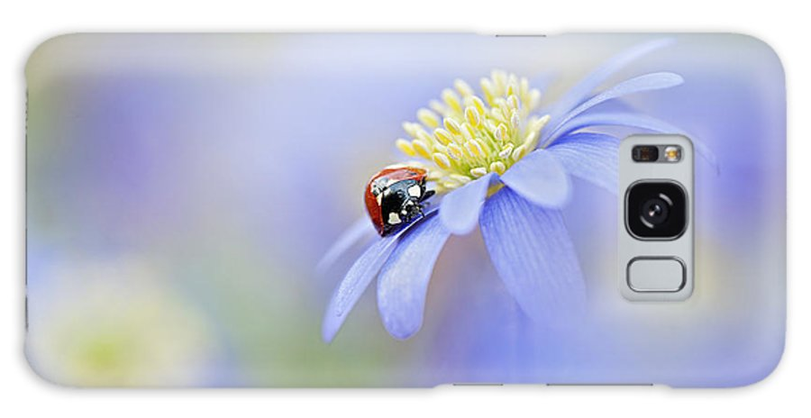 Ladybird Galaxy S8 Case featuring the photograph Anemone Lady by Jacky Parker