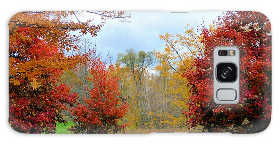 Landscape Galaxy S8 Case featuring the photograph Autumn Colors by Rennae Christman