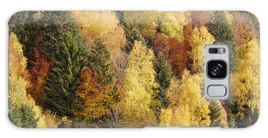 Multicolored Galaxy S8 Case featuring the photograph Autumn by Patrick Kessler